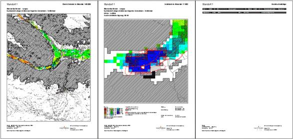 Ergebnisausgabe: Übersichtskarte, Standortkarte, Grundbuchinformationen zum Standort