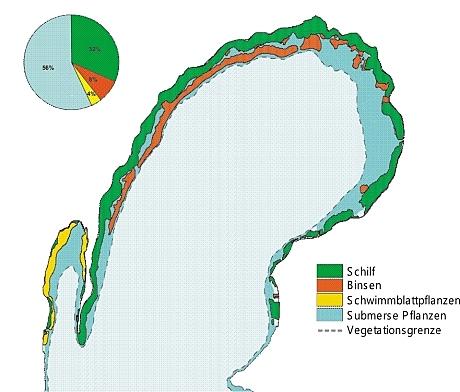 Zusammensetzung Makrophytenbestände Obertrumer See (Sbg.)