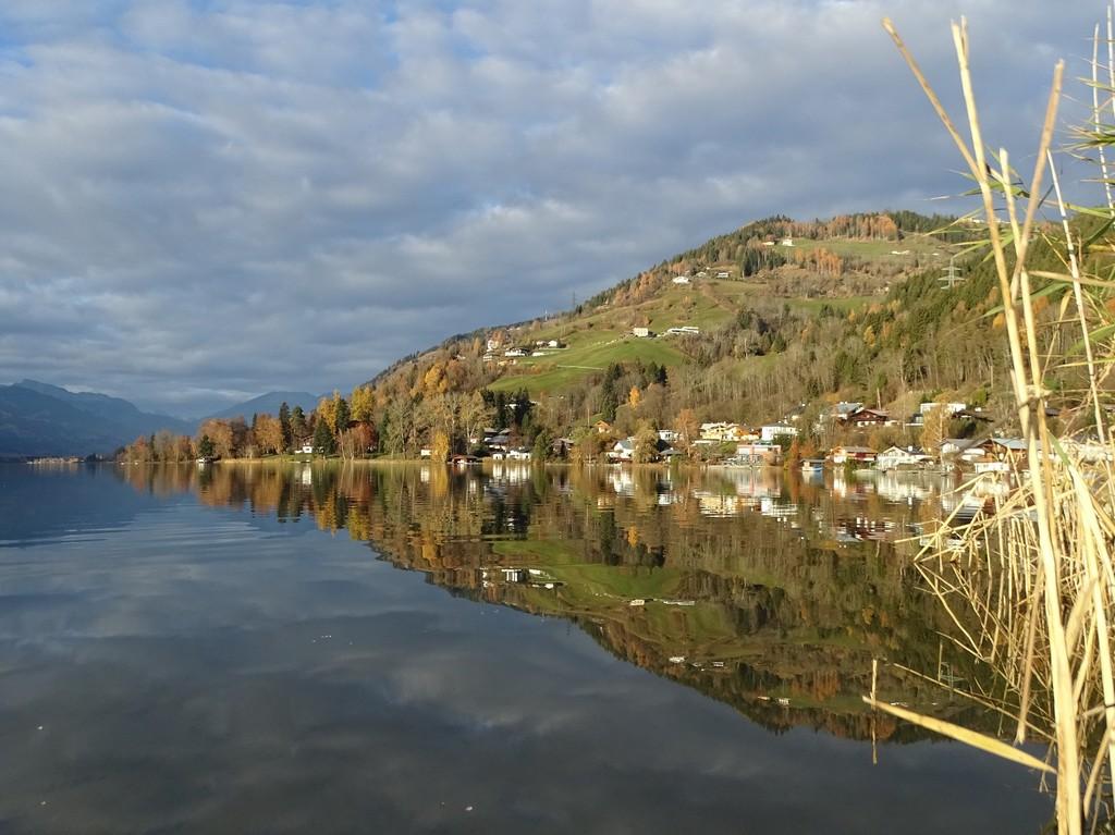 Zellersee: südliche Uferabschnitte